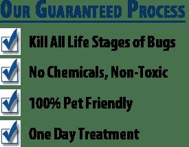 Scottsdale Bed Bug Heat Treatment Benefits