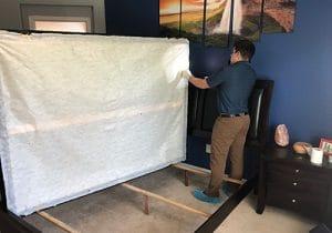 Scottsdale Bed bug Inspection